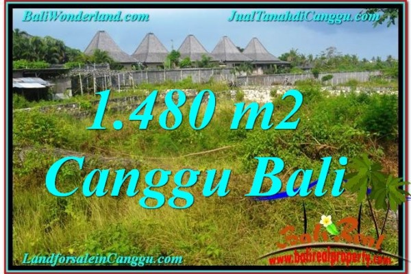 Affordable PROPERTY 1,480 m2 LAND FOR SALE IN CANGGU BALI TJCG212