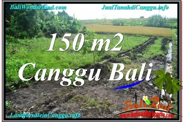 Exotic PROPERTY 150 m2 LAND IN CANGGU BALI FOR SALE TJCG213