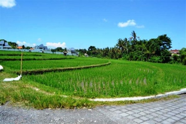 Land for sale in Canggu suitable for villa – LCG028