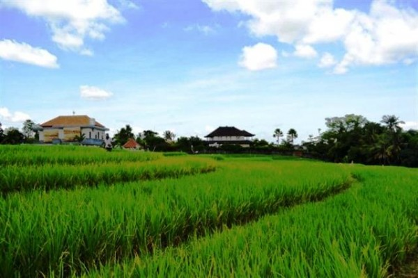 Land For Sale in Canggu Near Echo Beach – LCG029