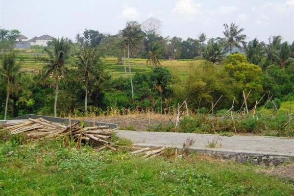 Land for sale in Canggu Bali with rice fields view suitable for investment – LCG055