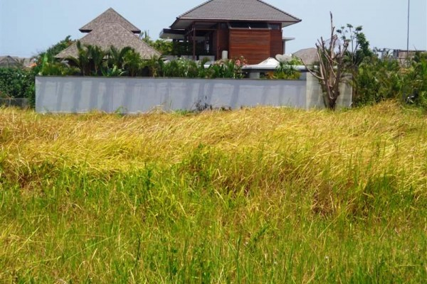 Land for sale in Canggu 10 minutes from the Beach good rice field view – LCG058
