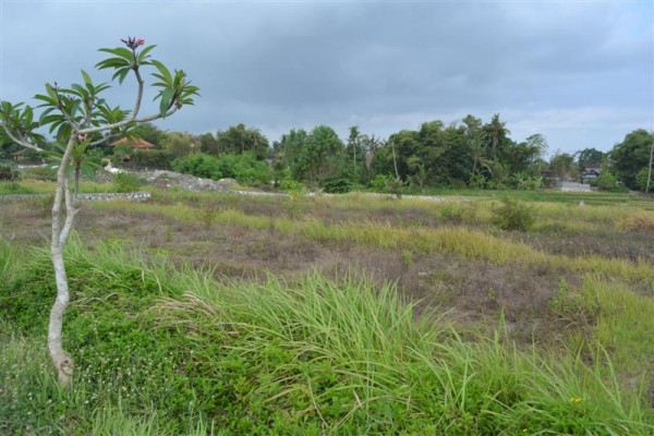 Land for sale in Canggu suitable for villa nice view – LCG064