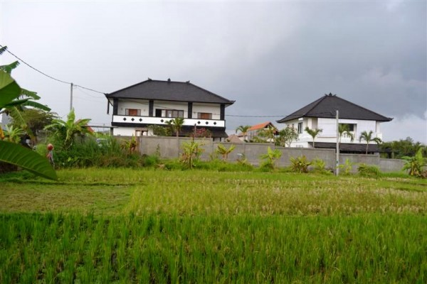 Land for sale in Canggu Near berawa beach stunning view rice fields – LCG065