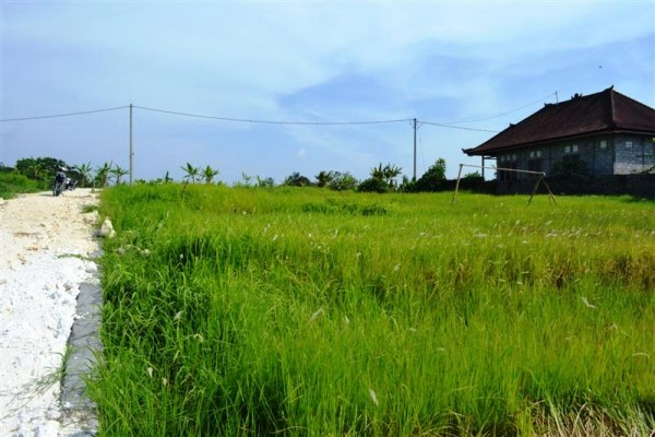 Land for sale in Canggu with stunning rice fiels view – LCG071