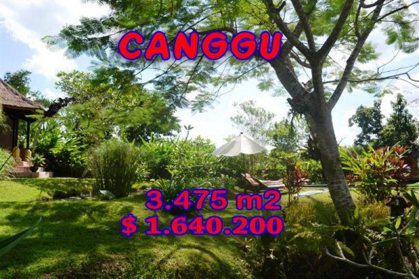 Exceptional Property in Bali, Land for sale in Canggu Bali – 3.475 sqm @ $ 472