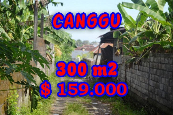 Land for sale in Canggu Bali, Gorgeous view in Kerobokan – TJCG107