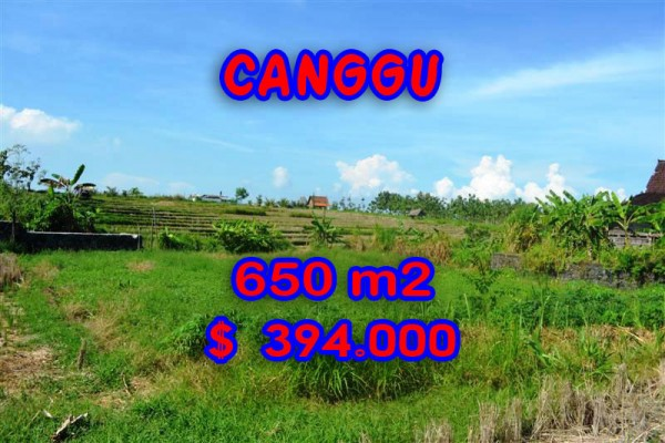 Land for sale in Bali, Beautiful view in Canggu Bali – 650 sqm @ $ 606