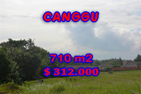 Amazing Property in Bali, land for sale in Canggu Bali – TJCG110