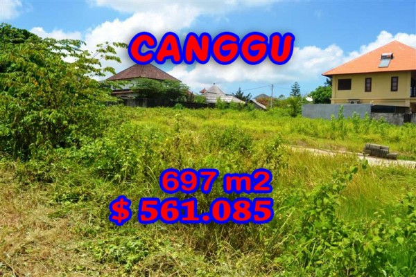 Land for sale in Canggu Bali Indonesia, Astonishing Paddy View in Canggu Berawa – TJCG097