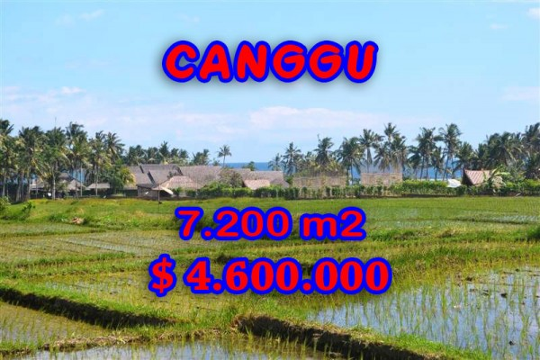 Attractive Property in Bali, Land sale in Canggu Bali – 7,200 sqm @ $ 639