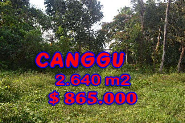 land in Canggu Bali for sale, Eye-catching view in Canggu Brawa – TJCG124