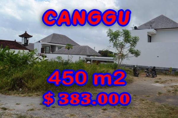 Extraordinary Land for sale in Canggu Bali, rice fields view in Batu Bolong – TJCG121