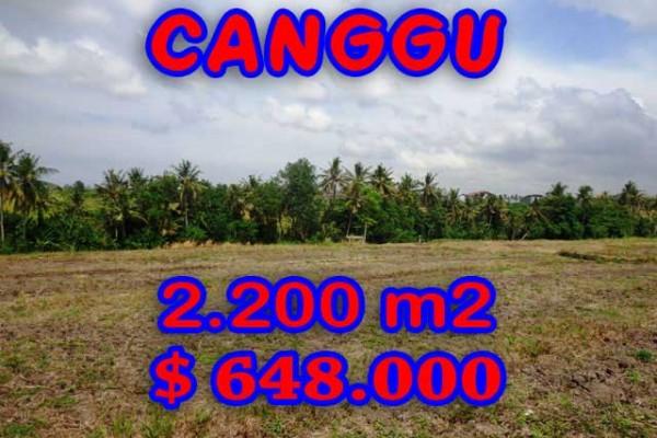 Land for sale in Bali, Amazing view in Canggu Bali – 2.200 sqm @ $ 294