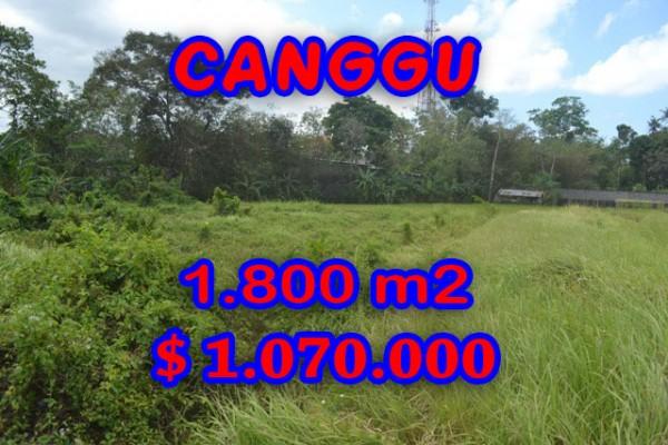 land in Canggu Bali for sale, Magnificent view in Canggu Batu Bolong – TJCG119