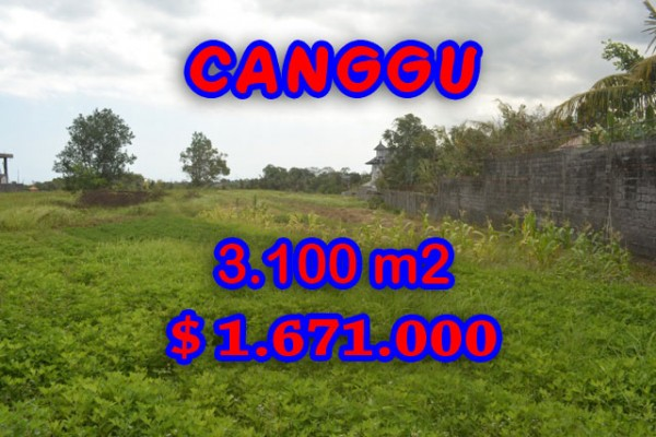 Land in Canggu for sale, Outstanding view in Canggu Batu Bolong Bali – TJCG120