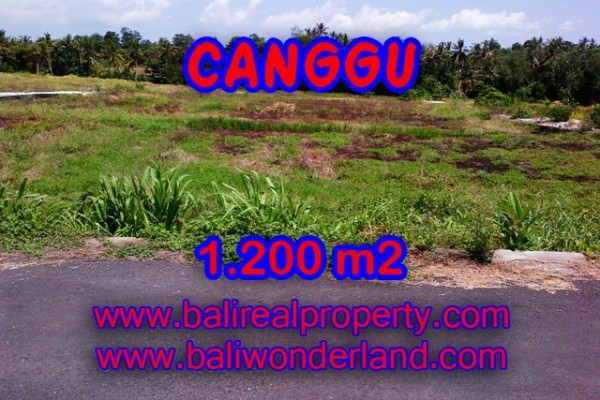 Exotic Property in Indonesia, Land for sale in Canggu Bali – 1.200 sqm @ $ 283