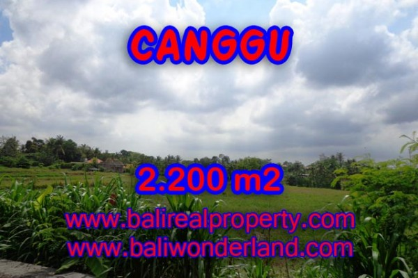 Land for sale in Bali, Exotic property in Canggu Bali – 2.200 sqm @ $ 283