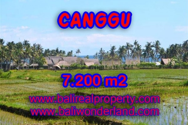 Land in Bali for sale, Eye-catching view in Canggu Bali – 7,200 sqm @ $ 639