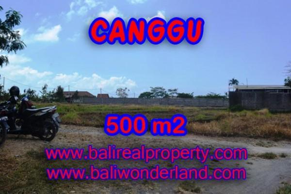 Land for sale in Bali, Beautiful view in Canggu Bali – 500 sqm @ $ 850