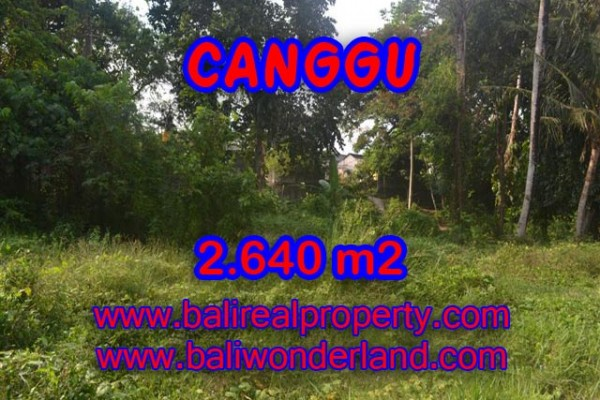 Land for sale in Bali, Amazing view in Canggu Bali – 2.640 sqm @ $ 328