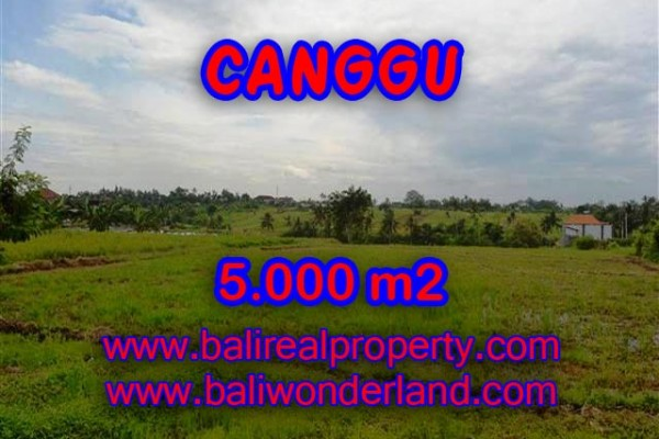 Land in Canggu Bali for sale, Exotic view in Canggu Babakan – TJCG132