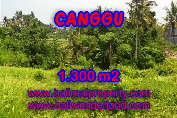 Land for sale in Canggu, Fantastic view in Canggu Batu bolong Bali – TJCG136