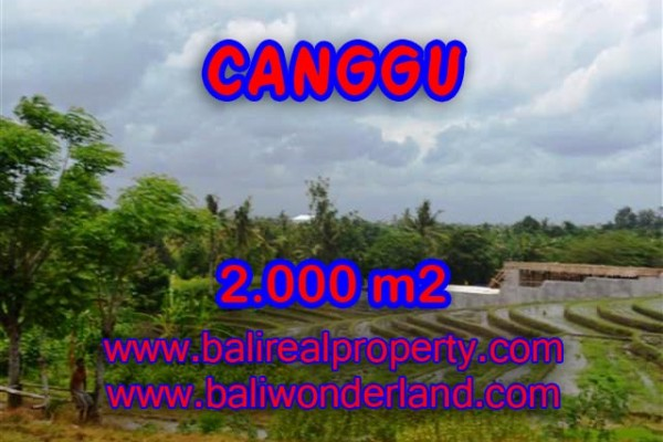 Land in Canggu for sale, Attractive view in Canggu Babakan Bali – TJCG133