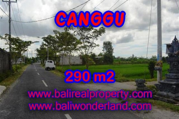 Land for sale in Canggu, Stunning view in Canggu Pererenan Bali – TJCG141