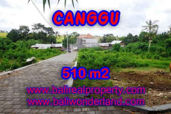 Land for sale in Bali, amazing view in Canggu Pererenan – TJCG150