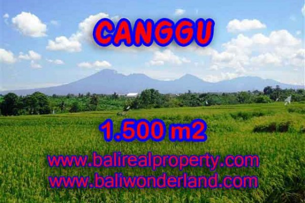 Interesting Land for sale in Canggu Bali, Rice fields and mountain view in Canggu Pererenan – TJCG144