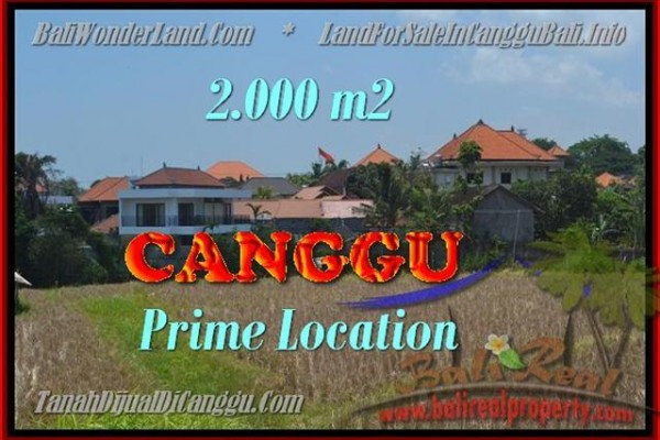 Beautiful 2.000 m2 LAND SALE IN Canggu Kayutulang BALI TJCG167