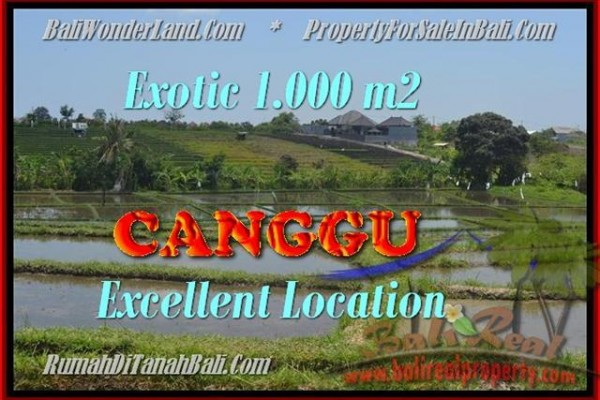 Beautiful 1.000 m2 LAND SALE IN Canggu Kayutulang BALI TJCG168