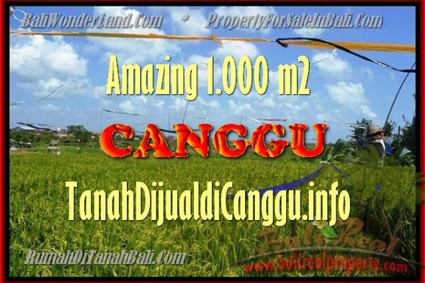 Exotic Canggu Kayutulang BALI 1.000 m2 LAND FOR SALE TJCG154