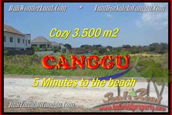 Magnificent PROPERTY 3.500 m2 LAND FOR SALE IN CANGGU TJCG165