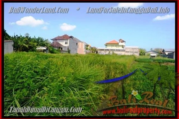 Beautiful PROPERTY CANGGU 770 m2 LAND FOR SALE TJCG148
