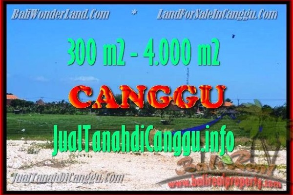 Exotic PROPERTY 300 m2 LAND FOR SALE IN CANGGU TJCG151