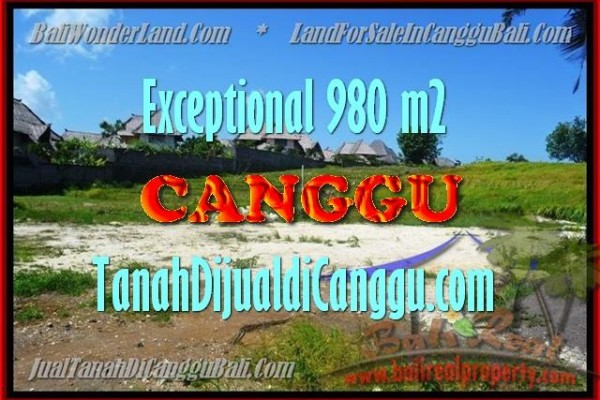 FOR SALE Beautiful 980 m2 LAND IN Canggu Pererenan BALI TJCG152