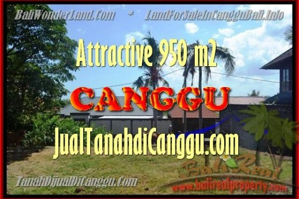 Exotic PROPERTY 450 m2 LAND FOR SALE IN CANGGU TJCG153