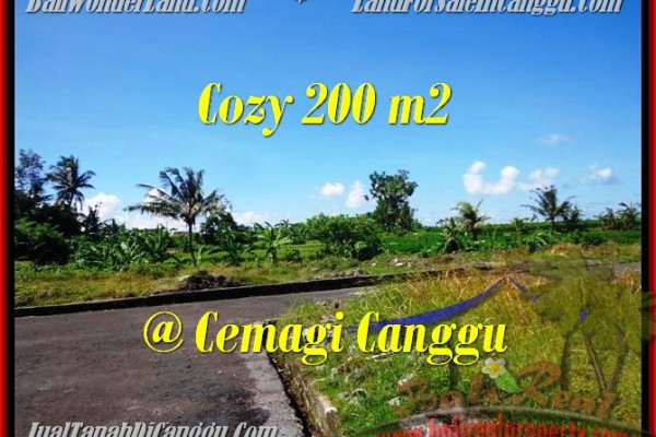 Exotic Canggu Mengening BALI 200 m2 LAND FOR SALE TJCG171