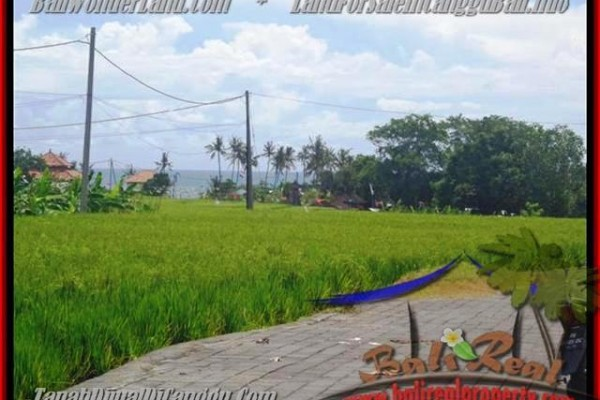 Beautiful 560 m2 LAND SALE IN Canggu Cemagi BALI TJCG138