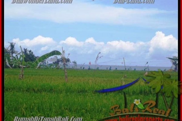 Affordable CANGGU BALI LAND FOR SALE TJCG140