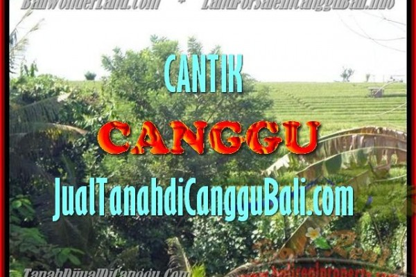 Beautiful LAND FOR SALE IN Canggu Pererenan TJCG143