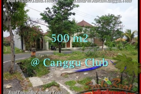 Beautiful PROPERTY CANGGU 500 m2 LAND FOR SALE TJCG176