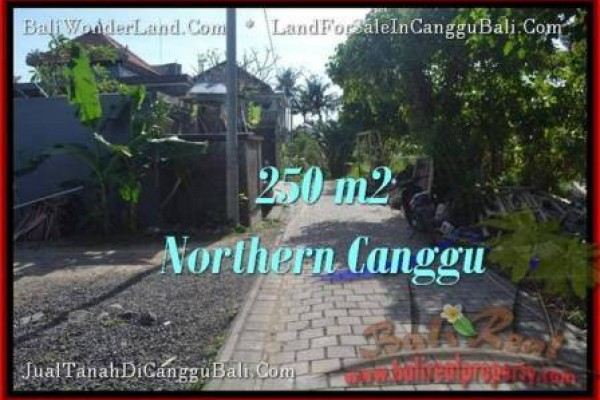 250 m2 LAND IN Canggu Pererenan BALI FOR SALE TJCG182