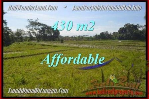 Affordable Canggu Pererenan BALI 430 m2 LAND FOR SALE TJCG183