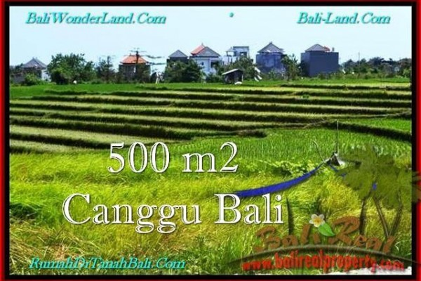 Magnificent PROPERTY LAND FOR SALE IN Canggu Brawa BALI TJCG192