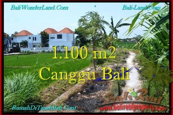 Beautiful PROPERTY LAND IN Canggu Brawa BALI FOR SALE TJCG193