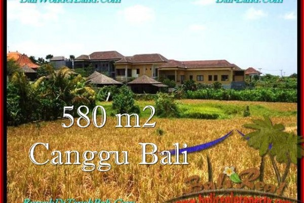 Beautiful 580 m2 LAND FOR SALE IN CANGGU TJCG197