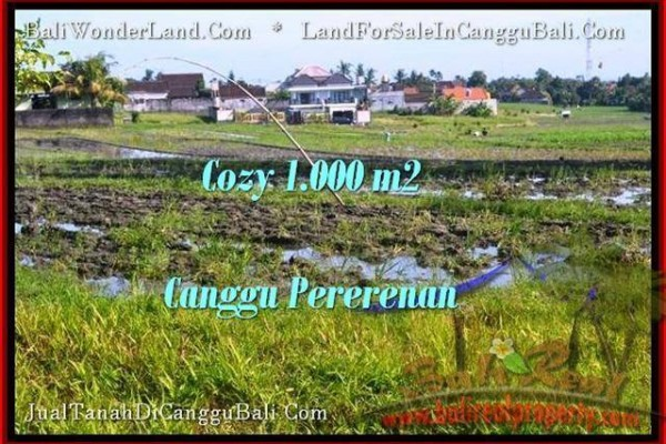 Exotic CANGGU 1,000 m2 LAND FOR SALE TJCG177